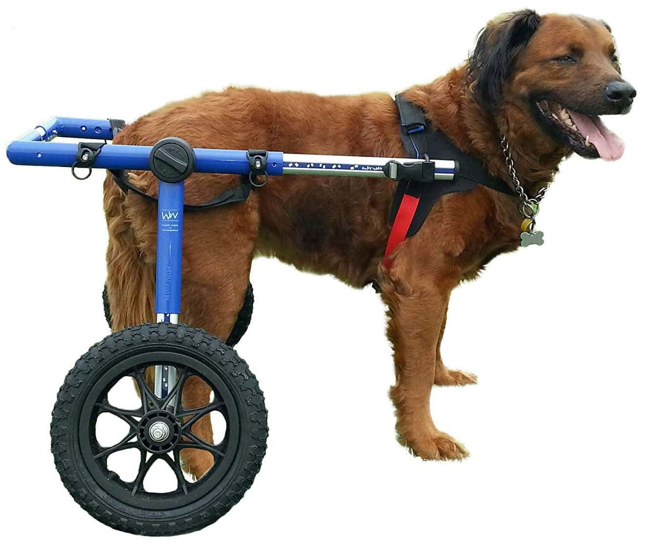 Walkin' Wheels Dog Wheelchair - for Large Dogs